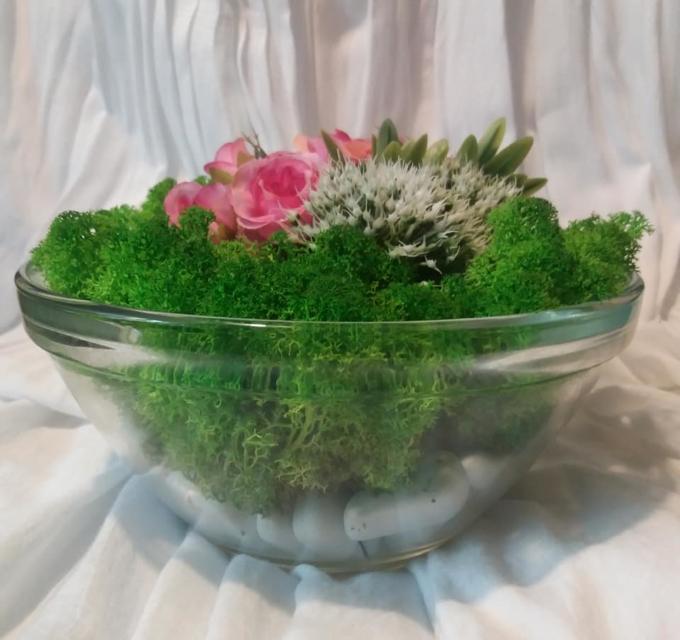 Decor cu licheni în bol de sticlă