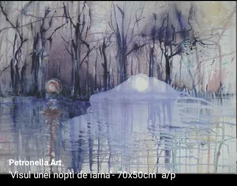 Visul unei nopti de iarna