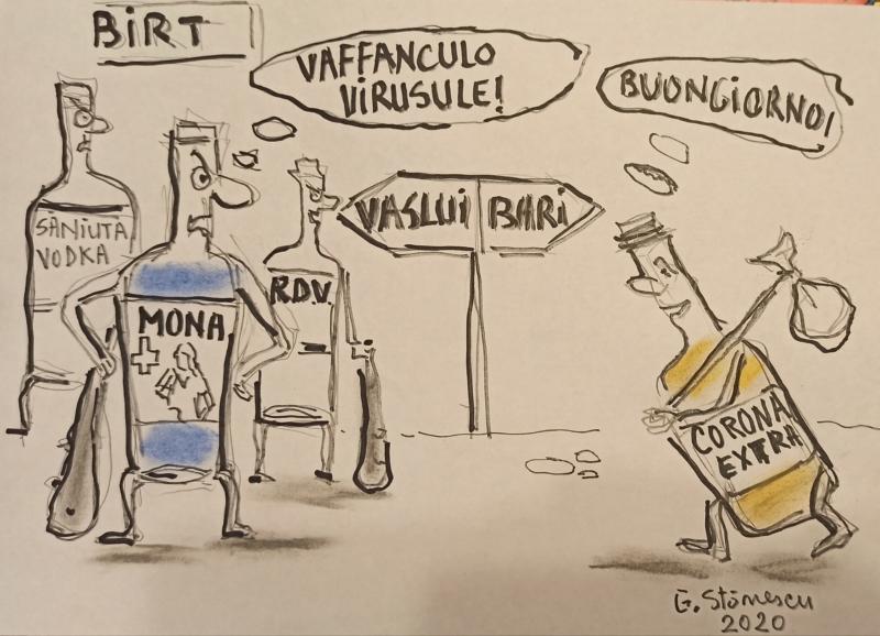 RDV Vaslui vs. Corona Bari